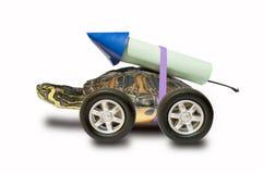 Tartaruga veloce Fotografia Stock