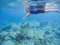 Tartaruga verde con la donna di nuoto nella maschera di protezione piena e nell'usura immergersi Fotografia Stock Libera da Diritti