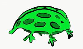 A tartaruga verde protegeu o sumário verde da cor verde da natureza de Art Illustration Vetora Photo Animal dos pontos ilustração stock