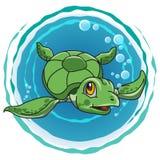 Tartaruga verde sveglia Fotografia Stock
