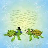 Tartarugas de mar engraçadas no amor Imagens de Stock