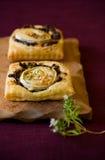 tartas del queso de cabra y de la cebolla roja Fotografía de archivo