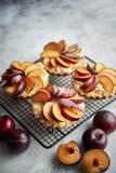 Tartas hechas en casa de la migaja con las rebanadas frescas del ciruelo puestas en parrilla de la hornada del hierro foto de archivo libre de regalías