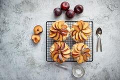 Tartas hechas en casa de la migaja con las rebanadas frescas del ciruelo puestas en parrilla de la hornada del hierro foto de archivo