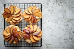 Tartas hechas en casa de la migaja con las rebanadas frescas del ciruelo puestas en parrilla de la hornada del hierro imagen de archivo libre de regalías
