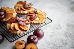 Tartas hechas en casa de la migaja con las rebanadas frescas del ciruelo puestas en parrilla de la hornada del hierro imagenes de archivo