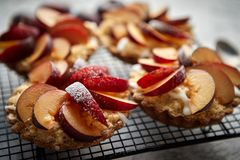 Tartas hechas en casa de la migaja con las rebanadas frescas del ciruelo puestas en parrilla de la hornada del hierro imagen de archivo