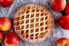 Tarte aux pommes de trellis cuite au four par maison sur le fond noir Photographie stock libre de droits