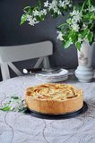 Tarte aux pommes de Tsvetaeva avec le formage caillé, gâteau au fromage russe avec des pommes Images libres de droits
