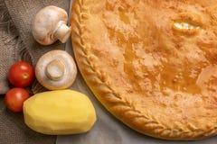 tarte délicieux avec des champignons et des pommes de terre images libres de droits