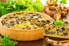 Tarte de champignon avec du fromage Image stock