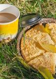 Tarte de citron sur l'herbe verte avec la tasse de café Images libres de droits