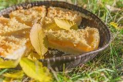 Tarte de citron sur l'herbe verte avec les feuilles tombées Image libre de droits