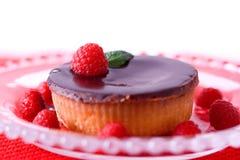 Tarte de framboise de chocolat Image libre de droits