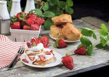 Tarte de morangos com polvilhar o açúcar dos pasteleiros fotografia de stock