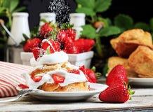 Tarte de morangos com polvilhar o açúcar 2 dos pasteleiros foto de stock royalty free