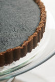 Tarte fraîche de chocolat Image stock