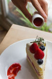 Tarte sablée de fraise Image libre de droits