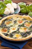 Tarte with spinach Stock Image