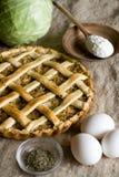 Tarte végétarien traditionnel avec le chou et les oignons images libres de droits