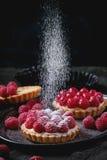 Tartelette avec des framboises Photographie stock libre de droits