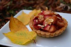 Tartelette colorée d'automne avec des pommes image libre de droits