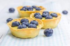 Tartelettes avec le lait caillé et les myrtilles de citron photo libre de droits