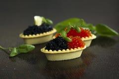 Tartelettes noires et rouges de caviar Image libre de droits