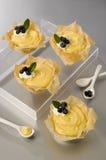 Tartes crèmes de vanille - chimie alimentaire Photo libre de droits