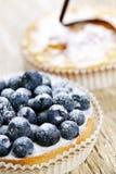 Tartes de fruit Photographie stock