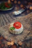 Tartin con queso y el tomate imagen de archivo libre de regalías