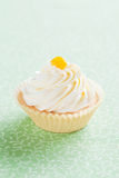 Tartlet Royalty Free Stock Photos