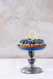 Tartlet with blueberries Stock Images