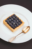 Tartlet with blueberries Royalty Free Stock Photos