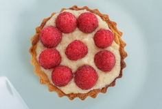 Tartlet Stock Photo