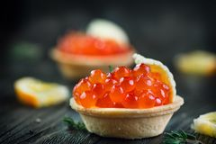 Tartlet con el primer de color salmón del caviar Bocados con el caviar de la trucha Foto de archivo