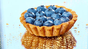 Tartlet with fresh blueberries Royalty Free Stock Photos