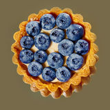 Tartlet with fresh blueberries Stock Images