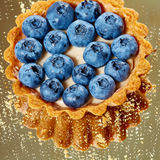 Tartlet with fresh blueberries Stock Photography