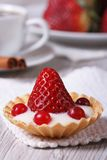 Tartlet with fresh strawberries, cranberries Stock Images