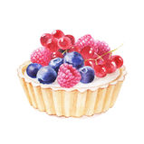 Tartlet with fruit hand drawn watercolor illustration on white background. Stock Image