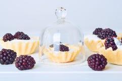 Tartlet med kräm nya dewberries Söt bärsommardesse royaltyfri foto