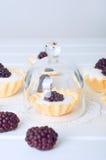 Tartlet med kräm nya dewberries Söt bärsommardesse arkivbilder