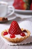 Tartlet mit frischen Erdbeeren, Moosbeeren stockbilder