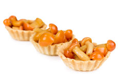 Tartlet with mushrooms honey agarics Royalty Free Stock Images