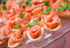 Tartlet  with salmon  . Royalty Free Stock Photo
