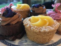 Tartlet, Tartlets, Tartlets!. Delicious, scrumptious, indulgent  and awesome afternoon tea Royalty Free Stock Photography