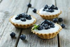 Tartlets десерта стоковые фотографии rf