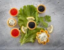 Tartlets заполнили с красным и черным салатом икры и сыра и укропа на белой плите против серебряной деревянной предпосылки Стоковое Изображение
