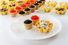 Tartlets заполнили с салатом сыра и укропа и икрой и плитой с tartlets против белой предпосылки Стоковая Фотография